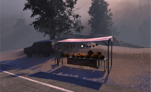 TSW : Pumpkins